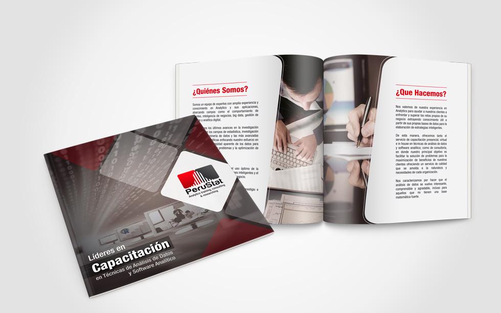 PeruStat Brochure