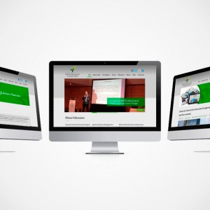 diseño web para INSPERCOM
